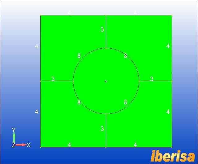 placa-con-circulo-mesh-sizing